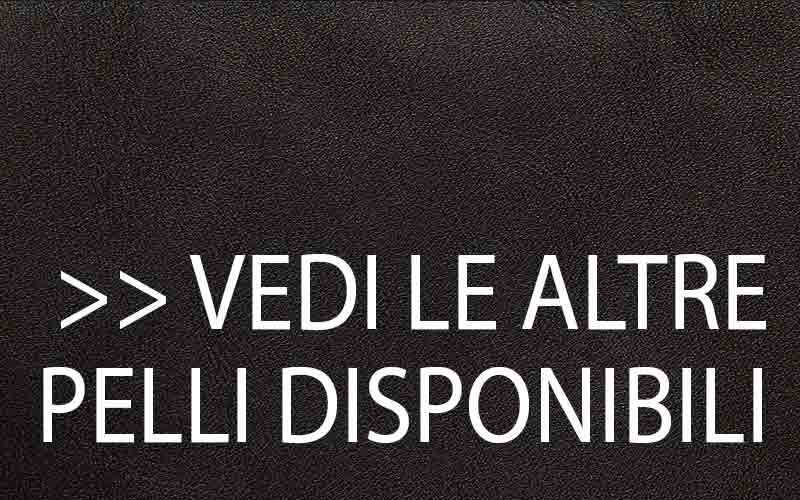 VEDI-PELLI-DISPONIBILI-4.jpg
